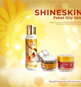 shineski paket oily skin